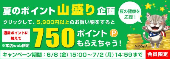 1万円以上のお買い物で800ポイントもらえちゃう!