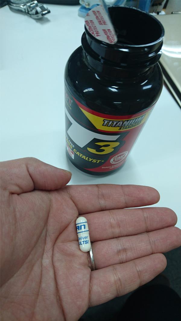 [ お得サイズ ] T3(ググルステロン ファットバーナー)
