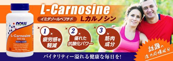 [ お得サイズ ] Lカルノシン 500mg(イミダゾールペプチド)