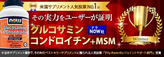 【定期購入あり】[ お得サイズ ] グルコサミン コンドロイチン + MSM