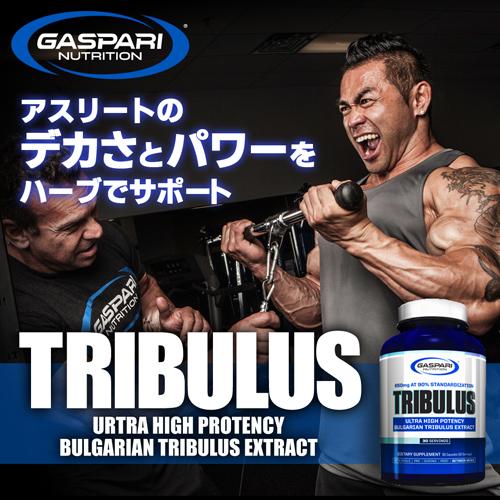 トリブラス 650mg 90粒 Tribulus 650mg 90% Capsules Gaspari Nutrition
