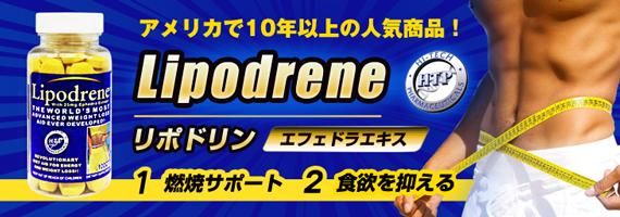 【送料無料】【メーカー正規品】リポドリン(エフェドラエキス25mg含有)【黄色】