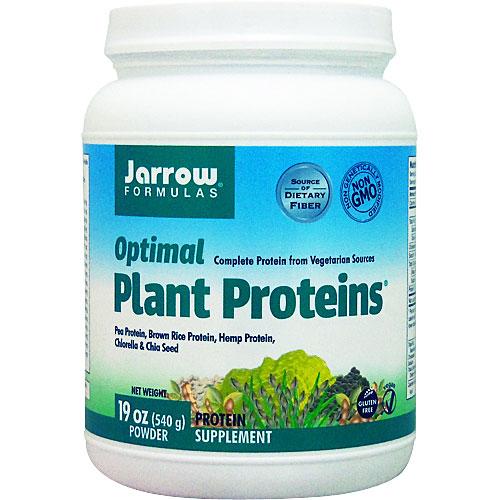 プロテイン 植物 性