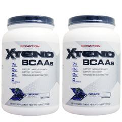 【2個セット】[大容量約1.2kg] エクステンド (BCAA+Lグルタミン+シトルリン) ※グレープ