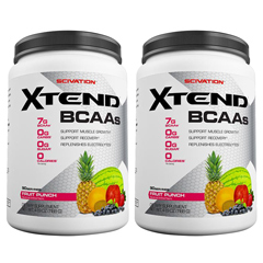 【2個セット】[大容量約1.2kg]エクステンド(BCAA+Lグルタミン+シトルリン)※フルーツパンチ