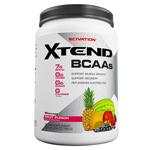 [大容量約1.2kg]エクステンド(BCAA+Lグルタミン+シトルリン)※フルーツパンチ