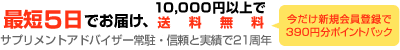 最短5日でお届け、10000円以上で送料無料