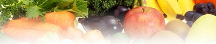 【ヤミーベアーズ】 お子様用オーガニック野菜&フルーツ+アンチオキシダント グミ