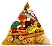 アニマルスナック プロテインバー(30種類の豊富な栄養素/チョコレート ピーナッツクランチ)