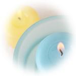 オーガニック パイン(ヨーロッパアカマツ) 100%ピュア・エッセンシャルオイル 7.4m