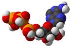 カルマグ ビタミンD3&ビタミンK2 (健骨サポート)