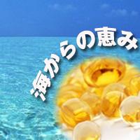 [ お得サイズ ] ダブルストレングス コッドリバーオイル(タラ肝油)