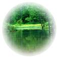 エコグリーン マルチビタミン&ミネラル(グリーンフード含有/鉄抜き)