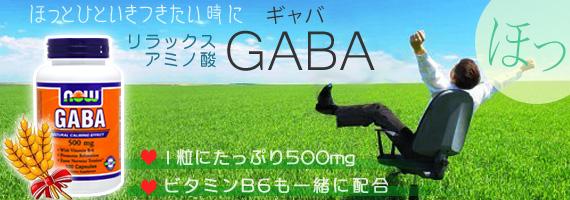 ギャバ GABA(ガンマアミノ酪酸) 500mg +B6 100粒