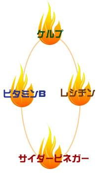KLB6 100粒(ケルプ、レシチン、ビタミンB6配合ダイエットフォーミュラ)
