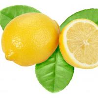 アバロンオーガニック ハンド&ボディローション レモン 340g
