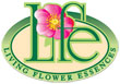 Living Flower Essences アディクション フォーミュラ(依存しがちな方に)