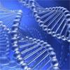 RNA 100mg & DNA 100mg GN