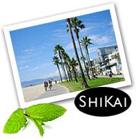 SHIKAI モイスチャライジング シャワージェル(ユズ)