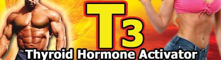 T3(ググルステロン ファットバーナー)
